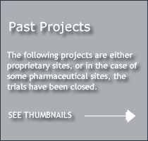 Thumbnails of Past Projects Follow